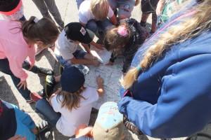 Die Kinder erkunden Neubrandenburg und das Reitbahnviertel per Karte...